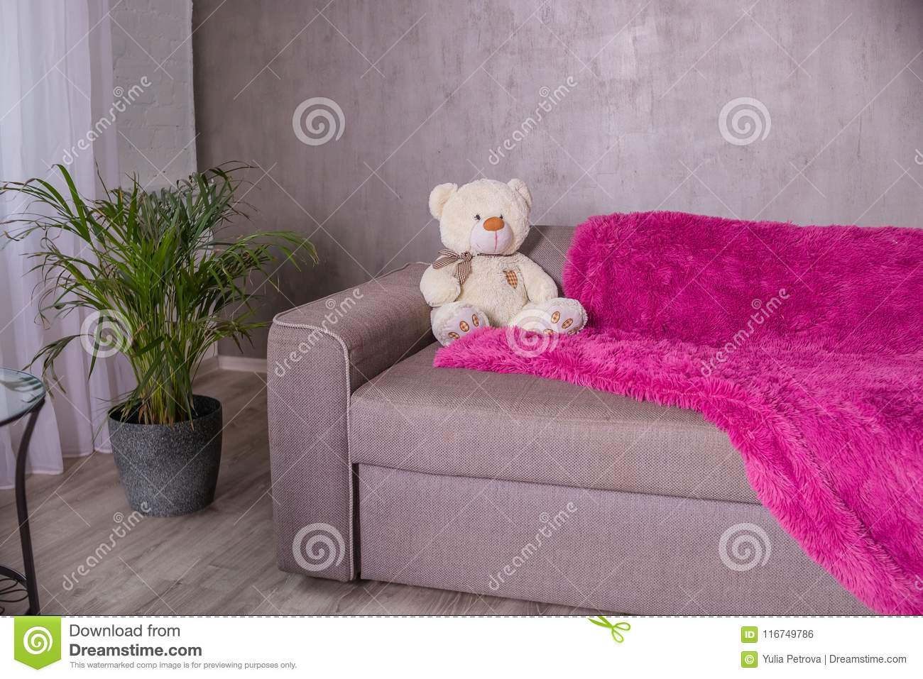 Download Teddy Bear   Sitting On Sofa Couch With Purple Blanket, Plaid. Palm  Tree