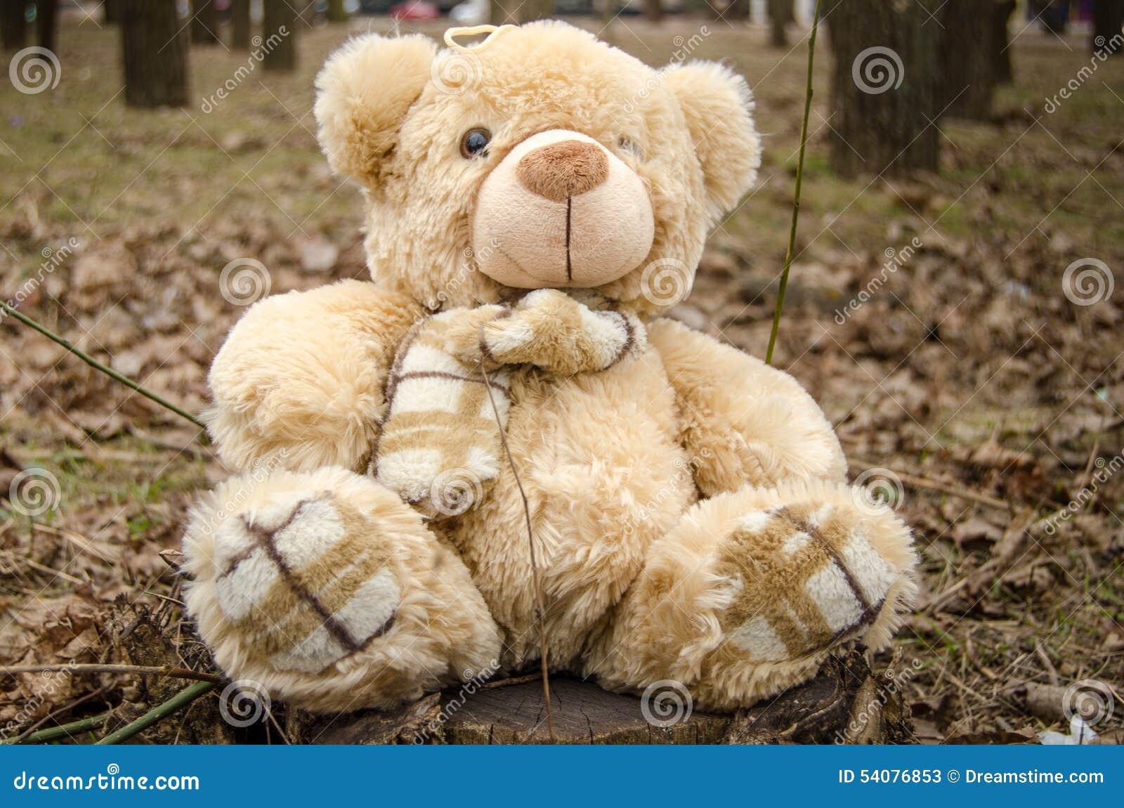 Teddy Bear-stuk speelgoed