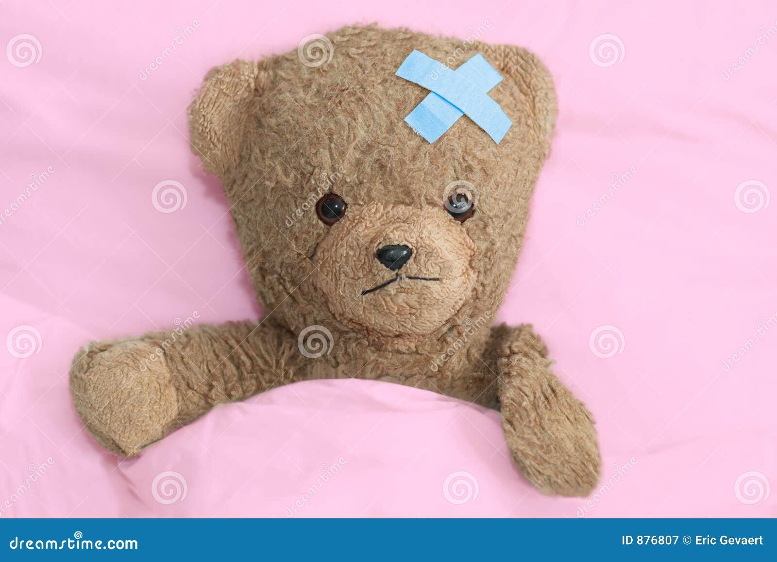 Teddy chory