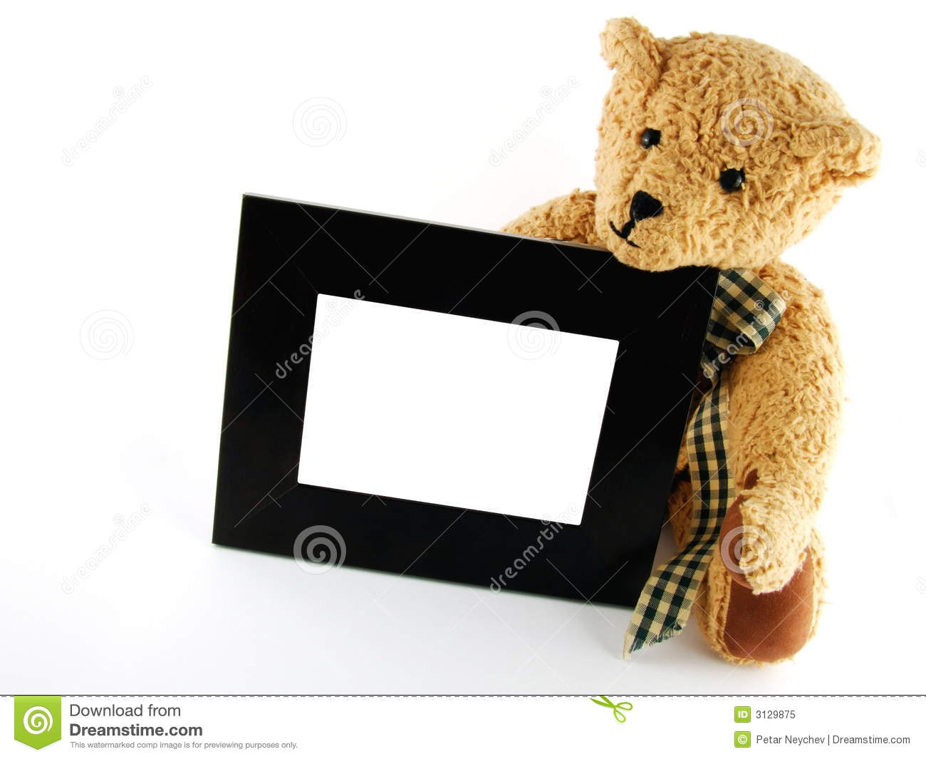 Teddy With Frame Stock Image Image Of Fluffy Brown Copyspace