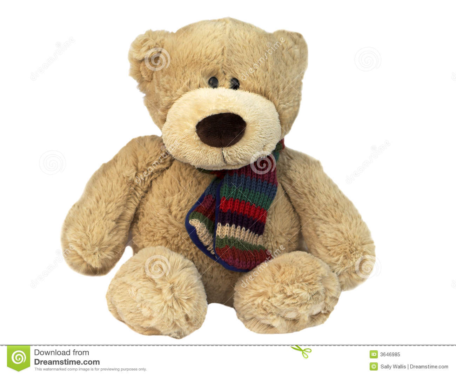 how to draw a teddy bear sitting down