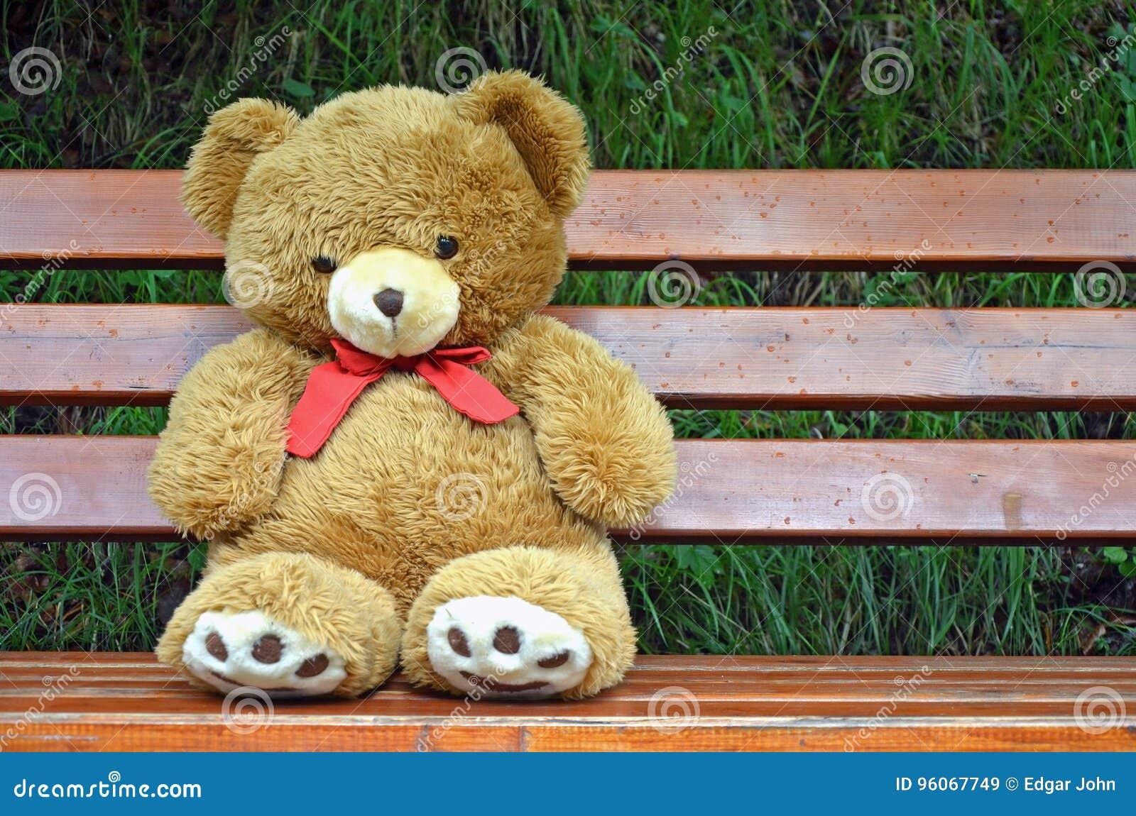 Teddy soli di BearImmagine 96067749 riserva di di BrownUnited Immagine KTJcF35ul1