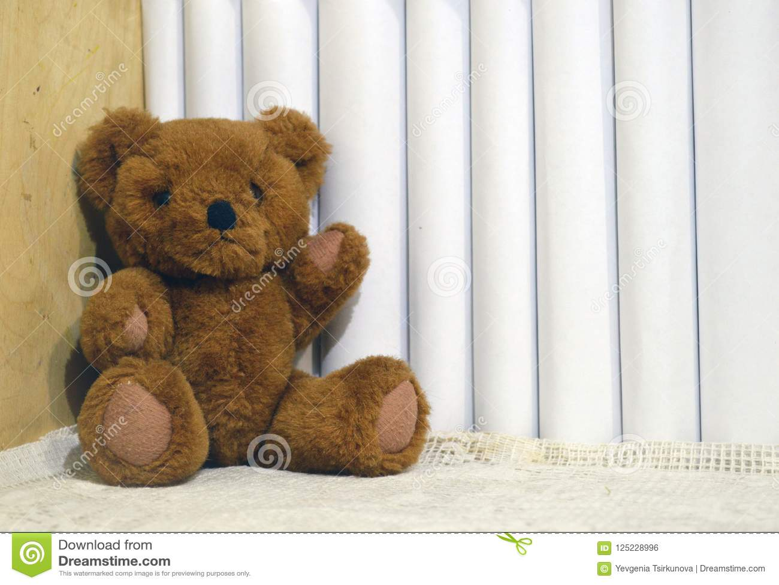 Teddybär betreffen das Bücherregal