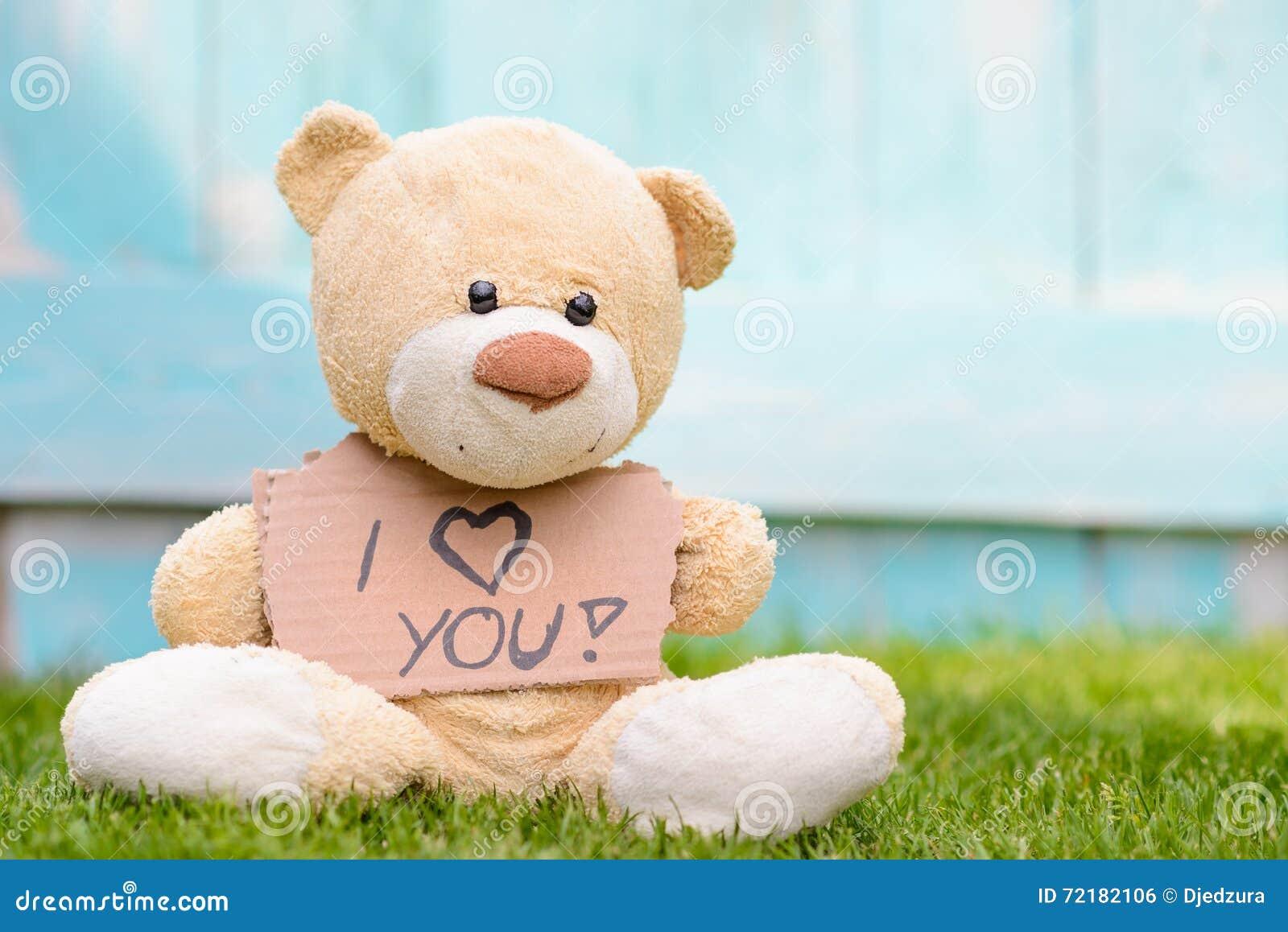 Holding ti Cartone informazioni Bear di delle con foto amo Teddy la HWEb9Y2eDI