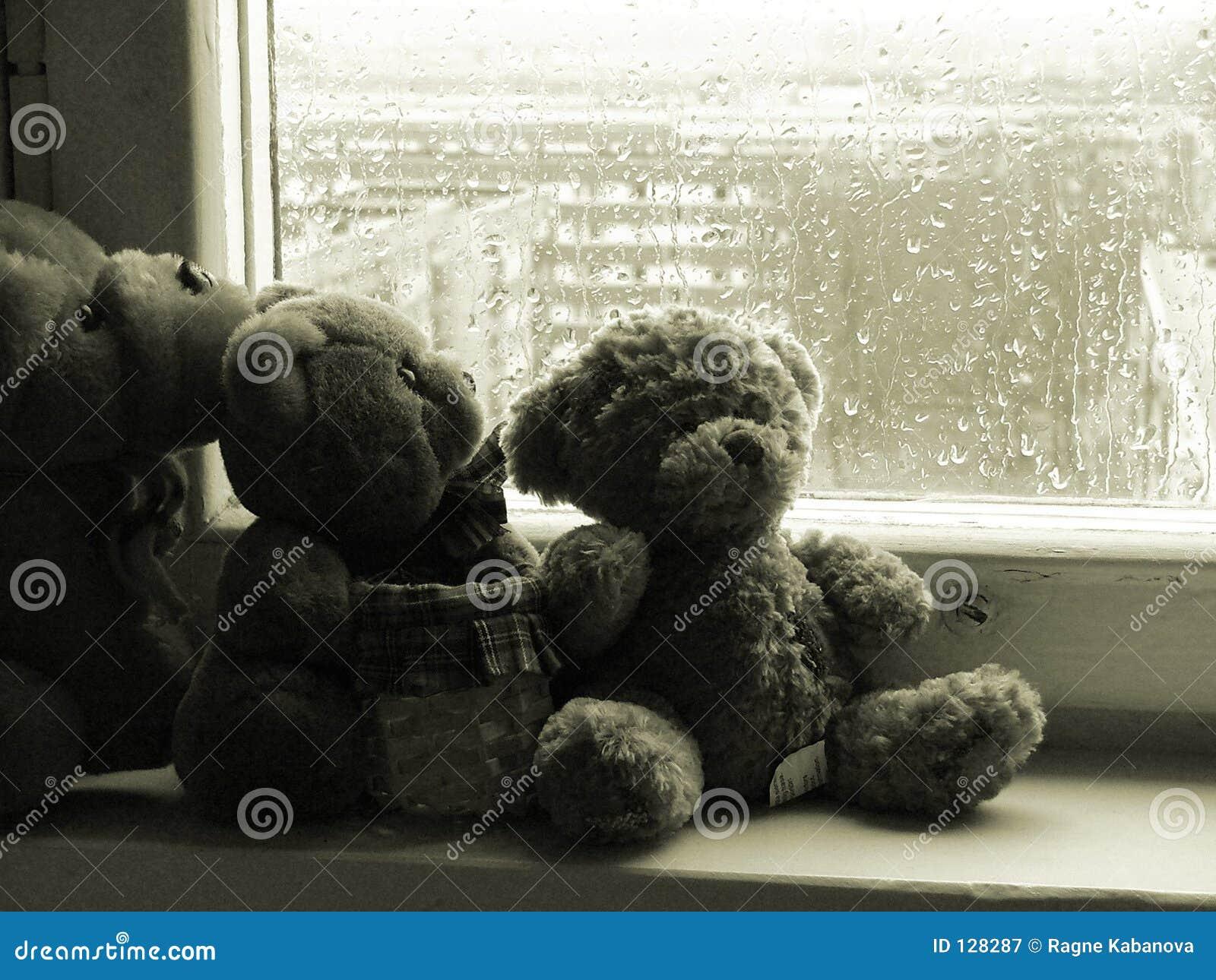 Teddybears дня ненастные