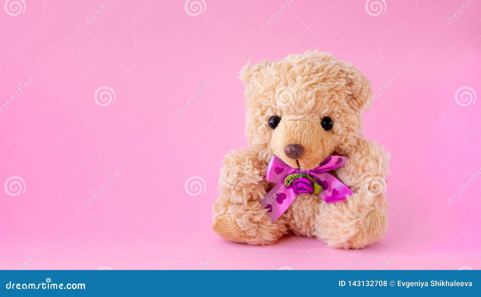 Teddybeer op roze achtergrond het concept de gift