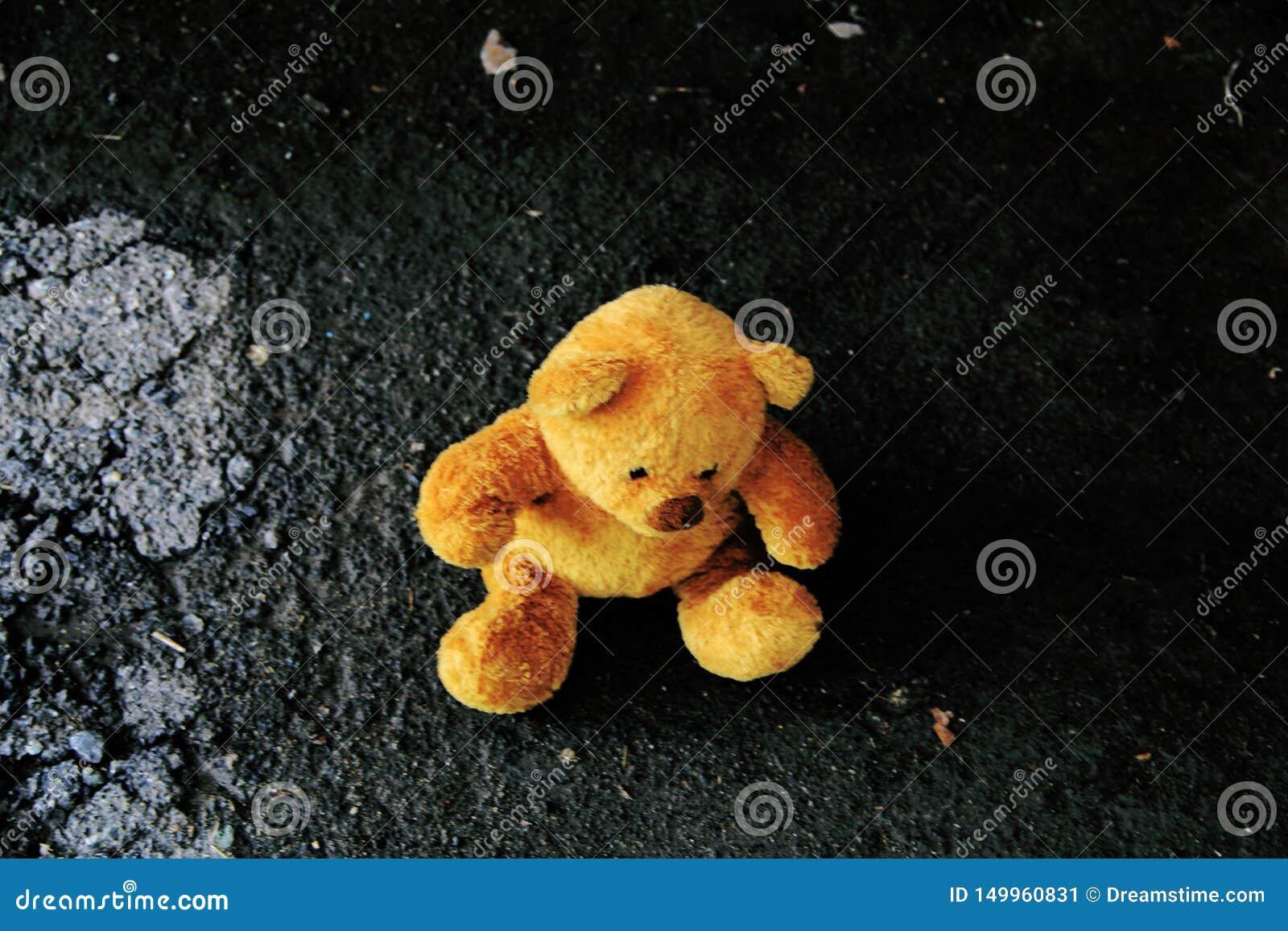 Teddybeerzitting ter plaatse