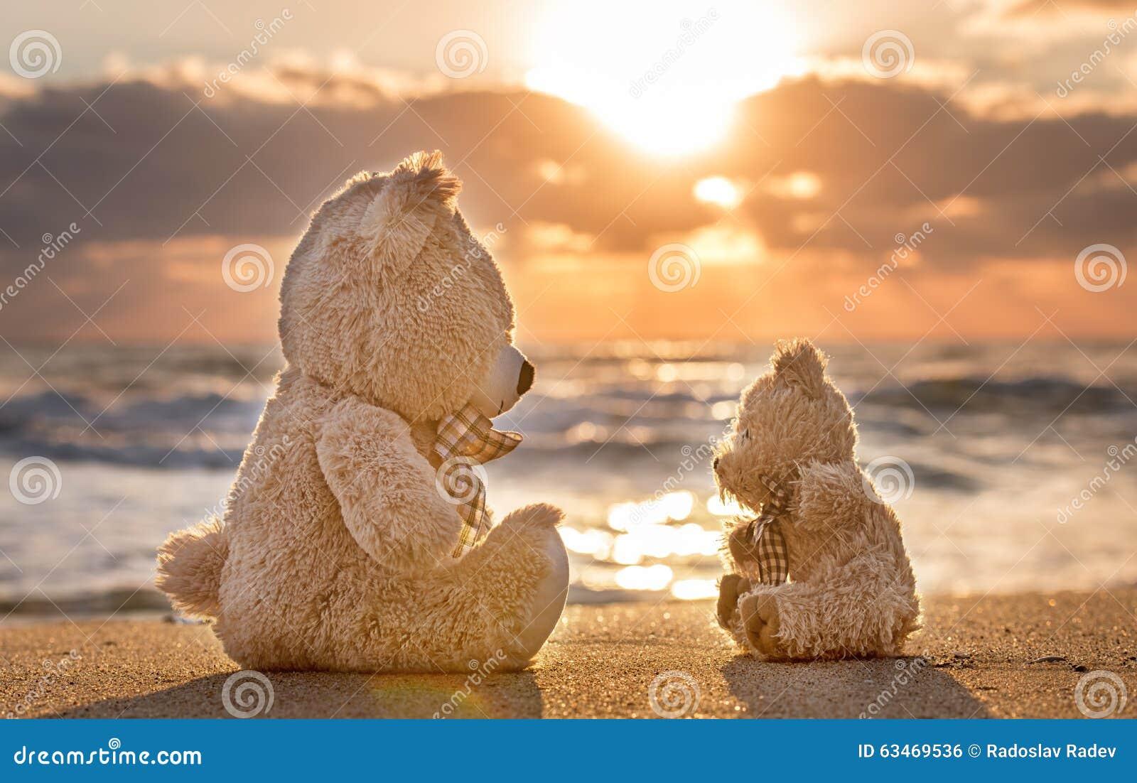 New Teddyberen Die Op Het Mooie Strand Met Liefde Zitten Concept Ab #OS95