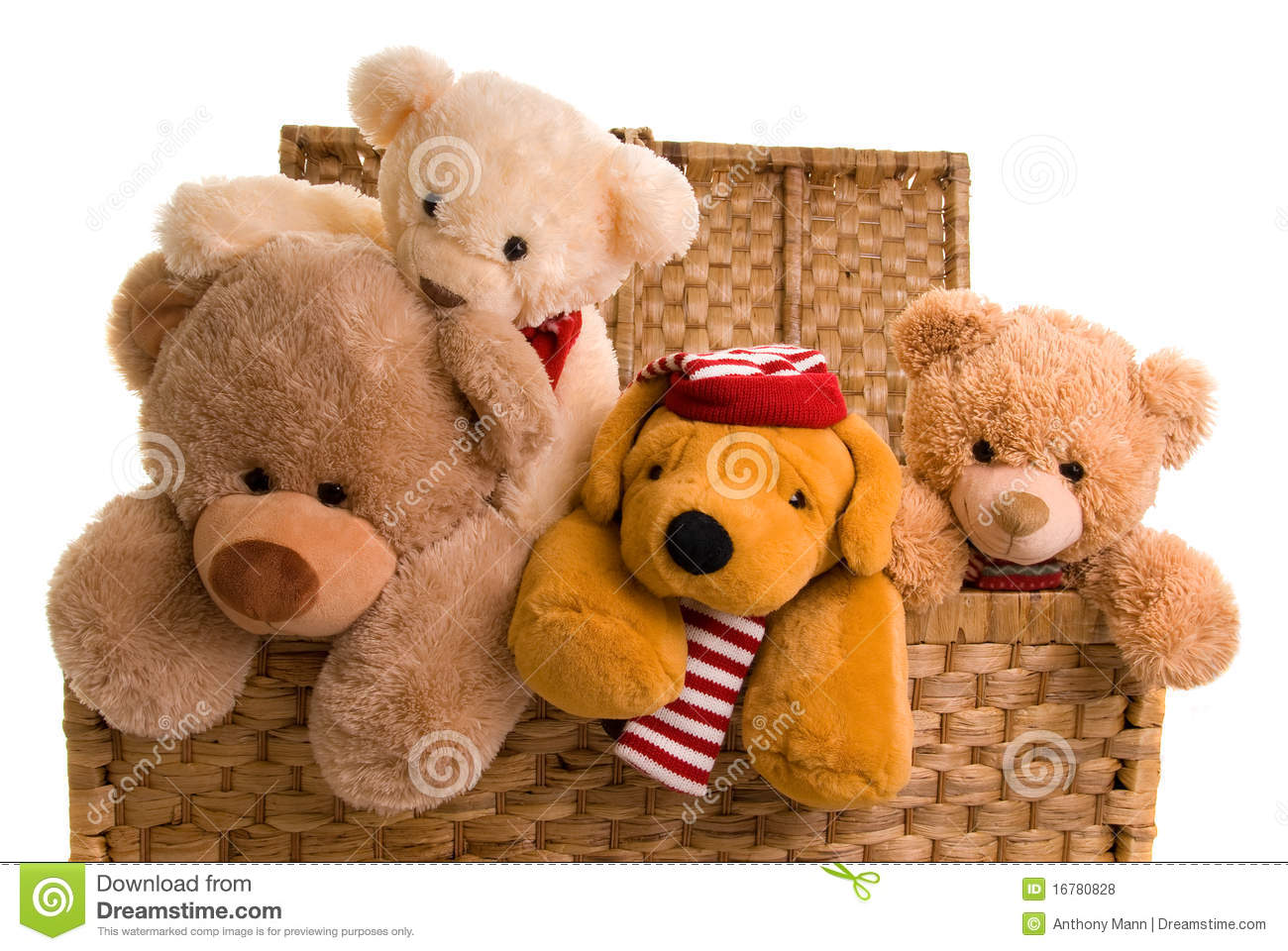 Teddys In A Toy Chest Royalty Free Stock Photos Image