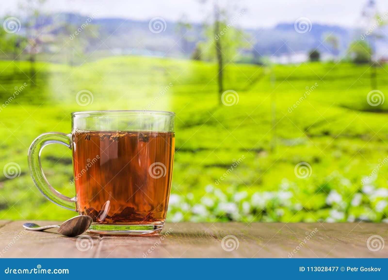 Tee in einem Glascup