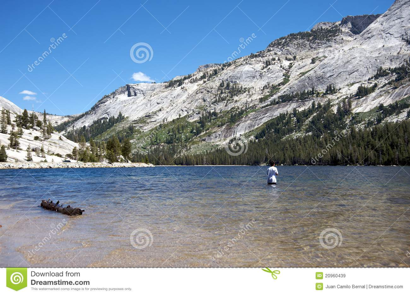 Teen fishing in yosemite royalty free stock images image for Fishing in yosemite