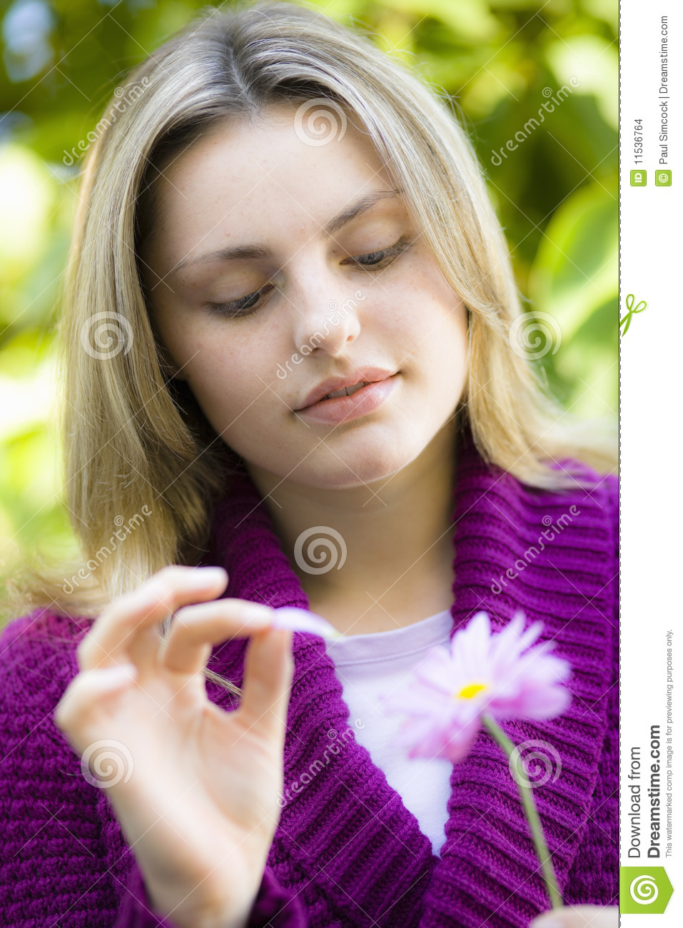 Teen Girl With Daisy Stock Images
