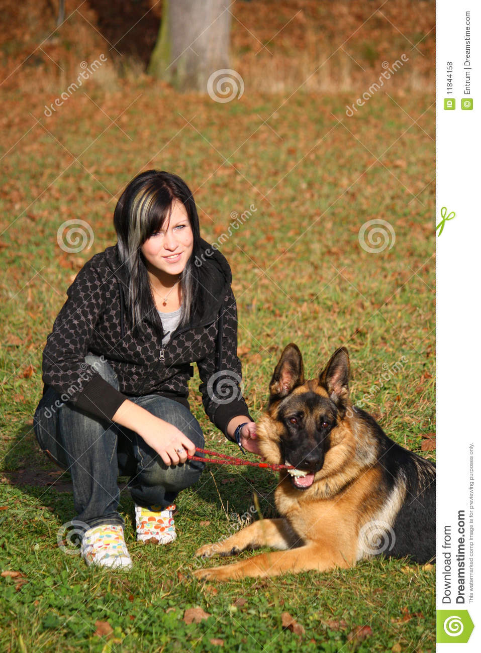 teen girl with dog royalty free stock photos   image 11844158