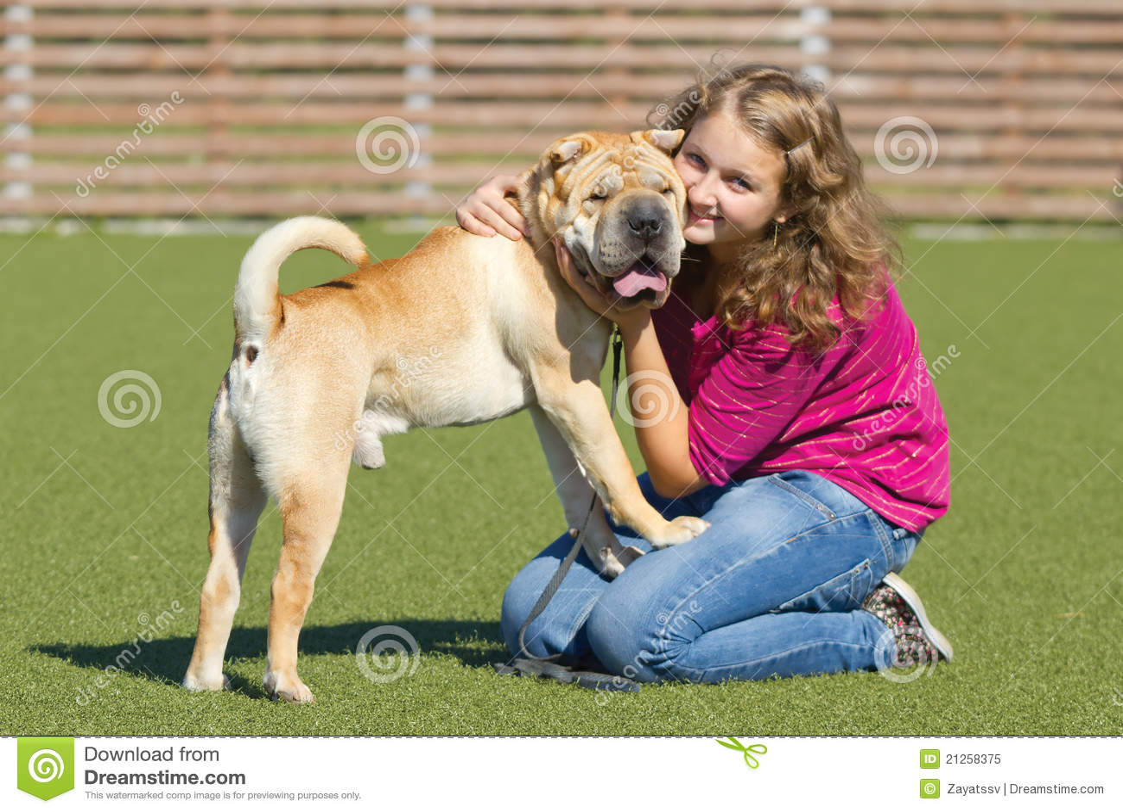 Field Of Dreams Dog Training