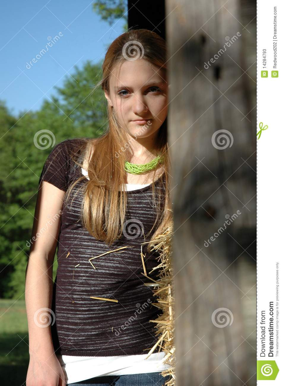 Teen Girl Standing In Barn Stock Image Image Of Cute