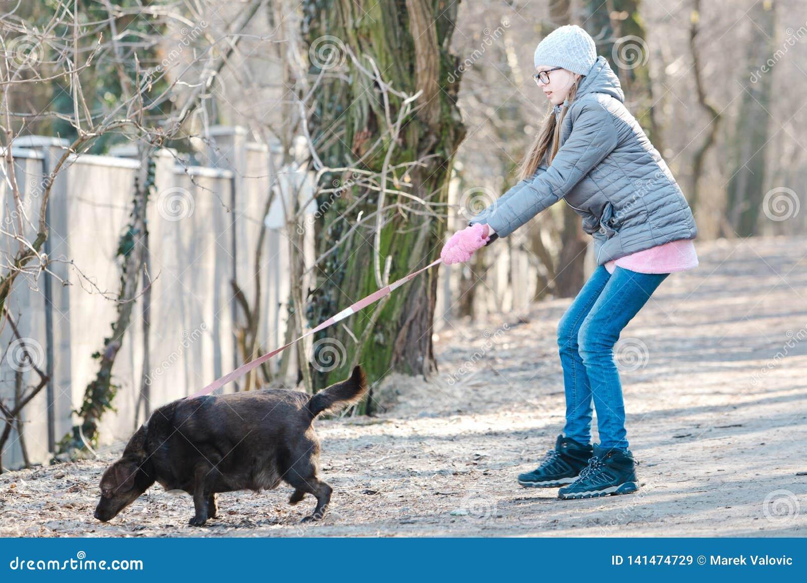 Teen girl walking a dog - A dog is pulling