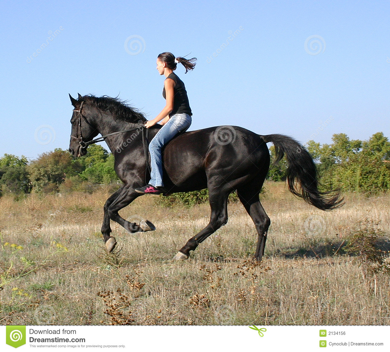3d girl with horse