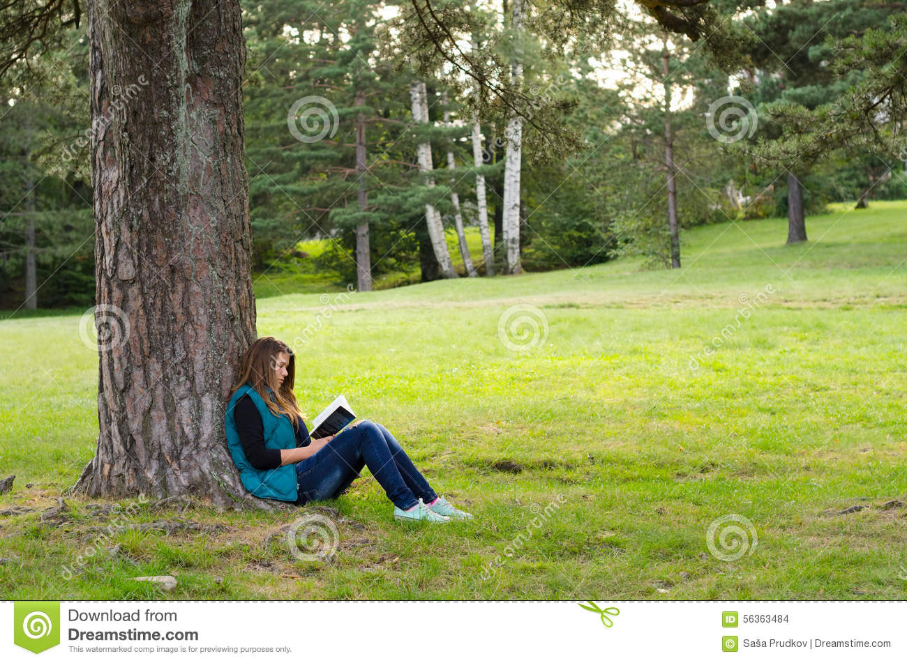 Girl In A Fairy Dress Sitting Under A Tree In The Woods Stock ...