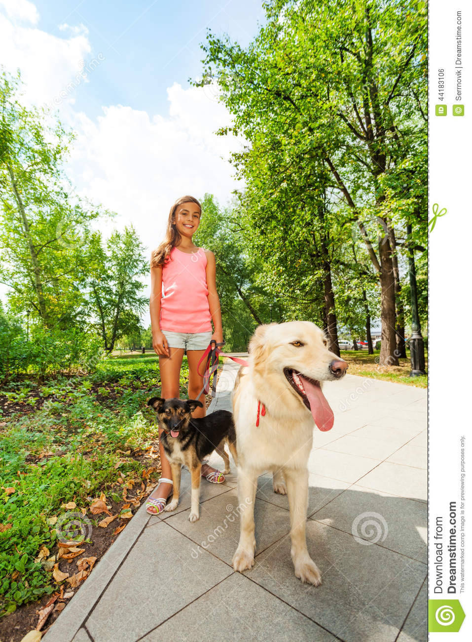 how to start a dog walking business as a teenager
