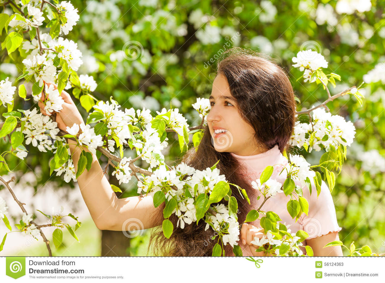 Teenager Girl Holding White Flowers On Pear Tree Stock Image Image