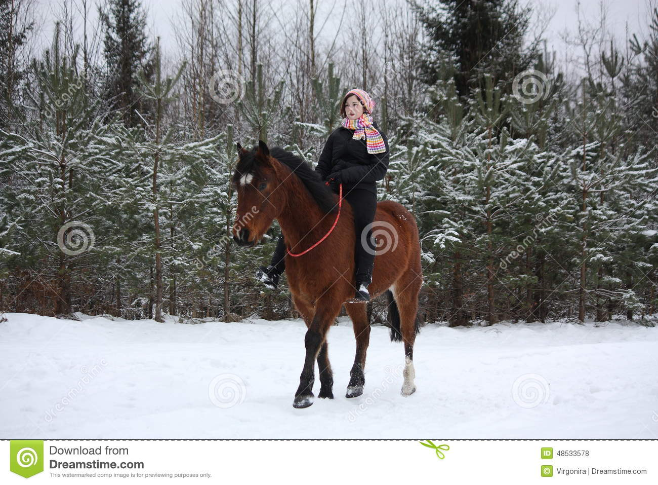 Teenager Girl Riding Horse Without Saddle And Bridle Stock