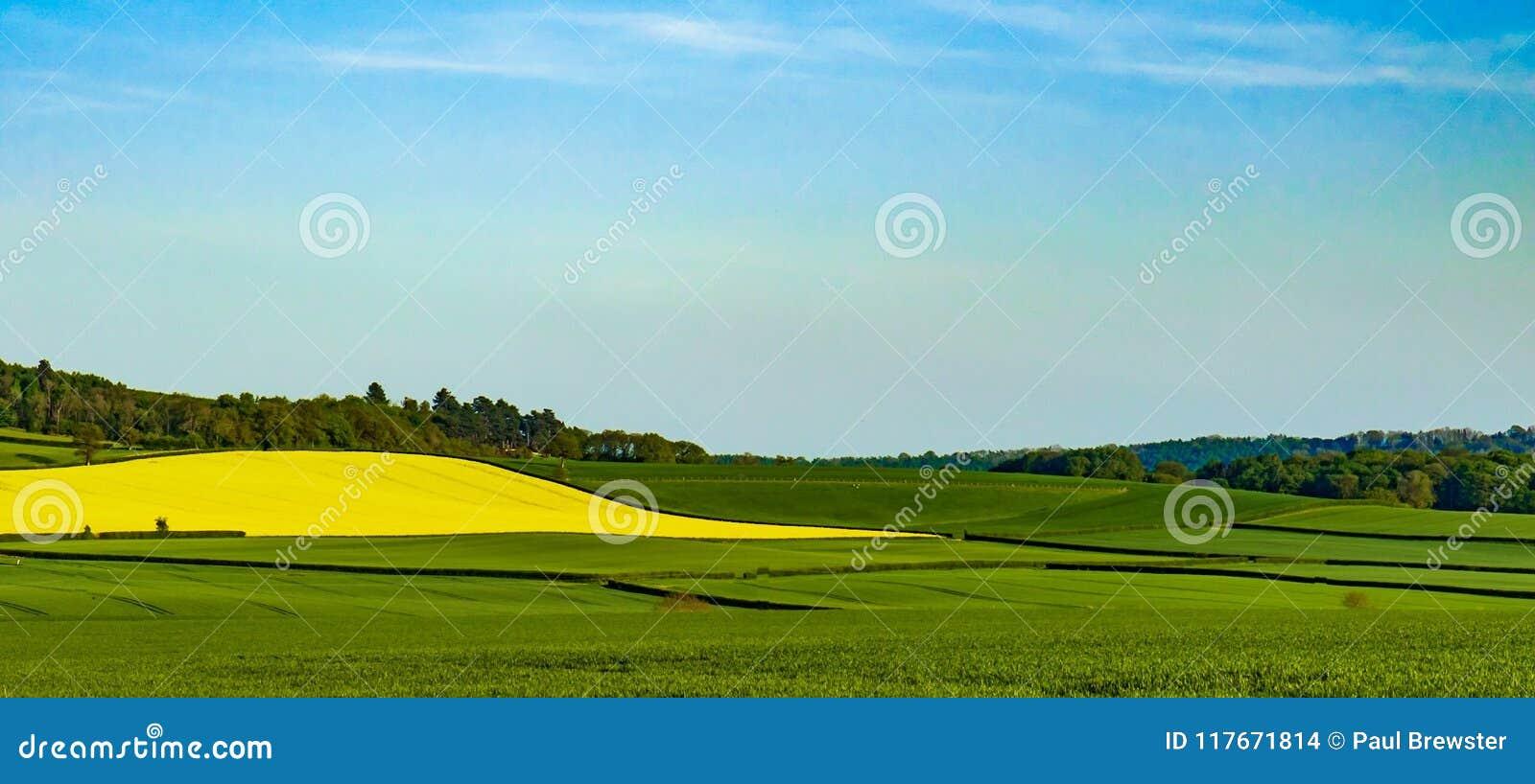 Tegenover elkaar stellende kleuren van de kant van het land van Shropshire Landschap