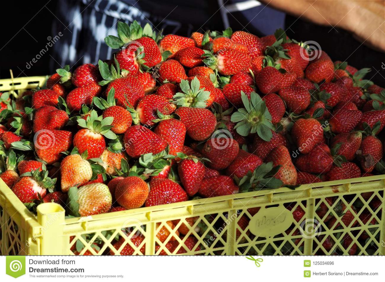 Strawberry Display Pictures