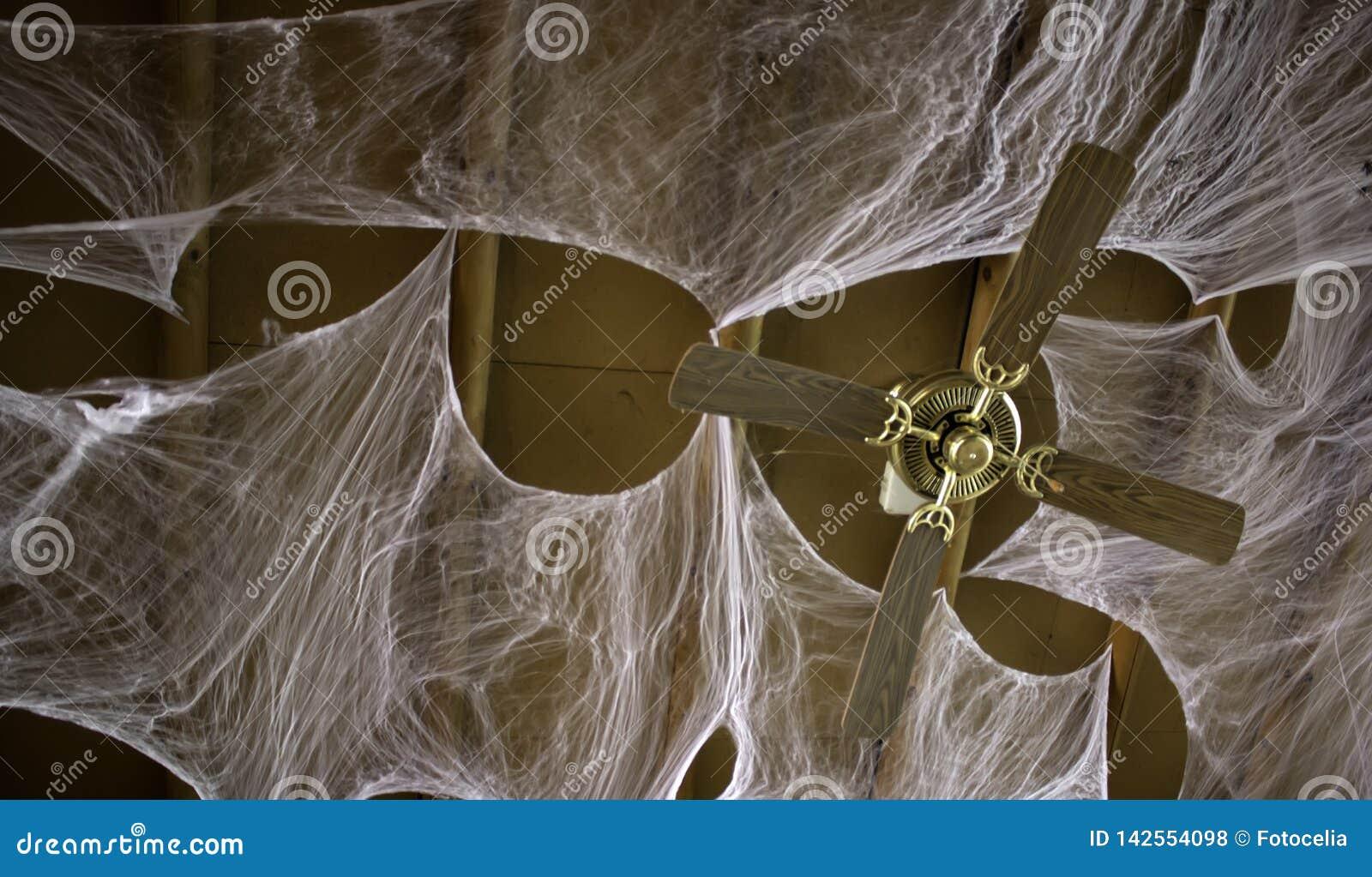 Teias de aranha no telhado