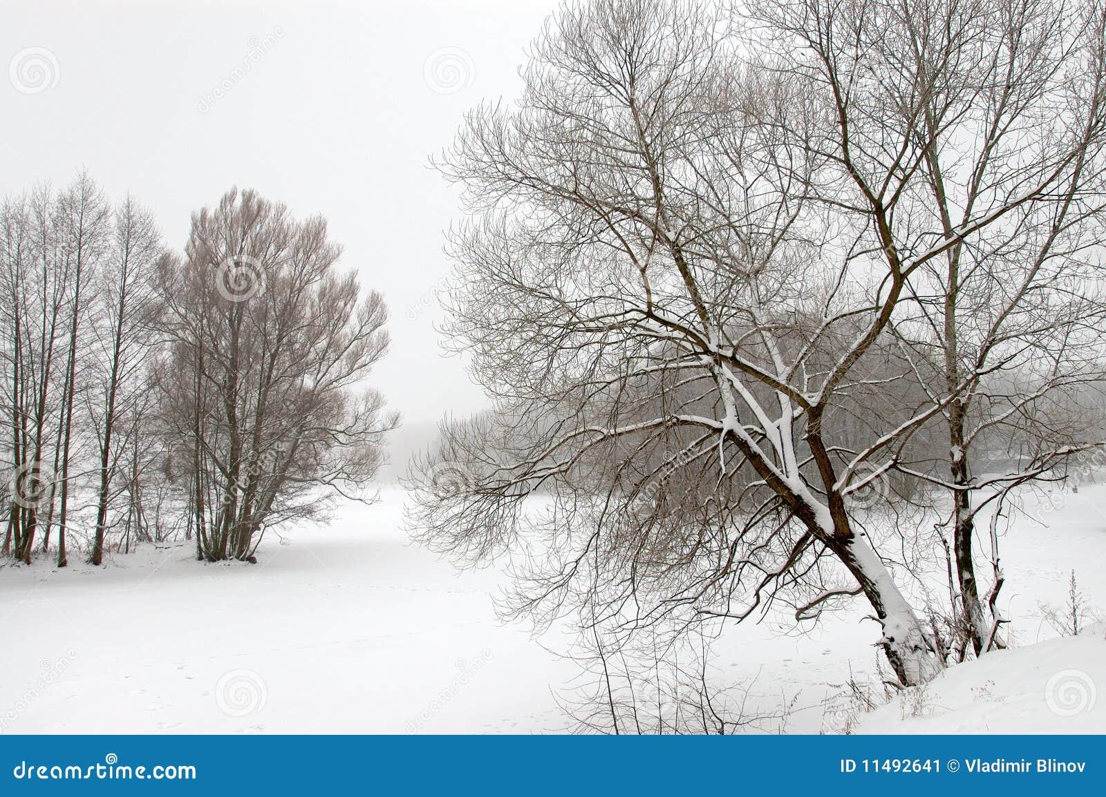 Tekening Van De Winter Stock Afbeelding Afbeelding Bestaande Uit