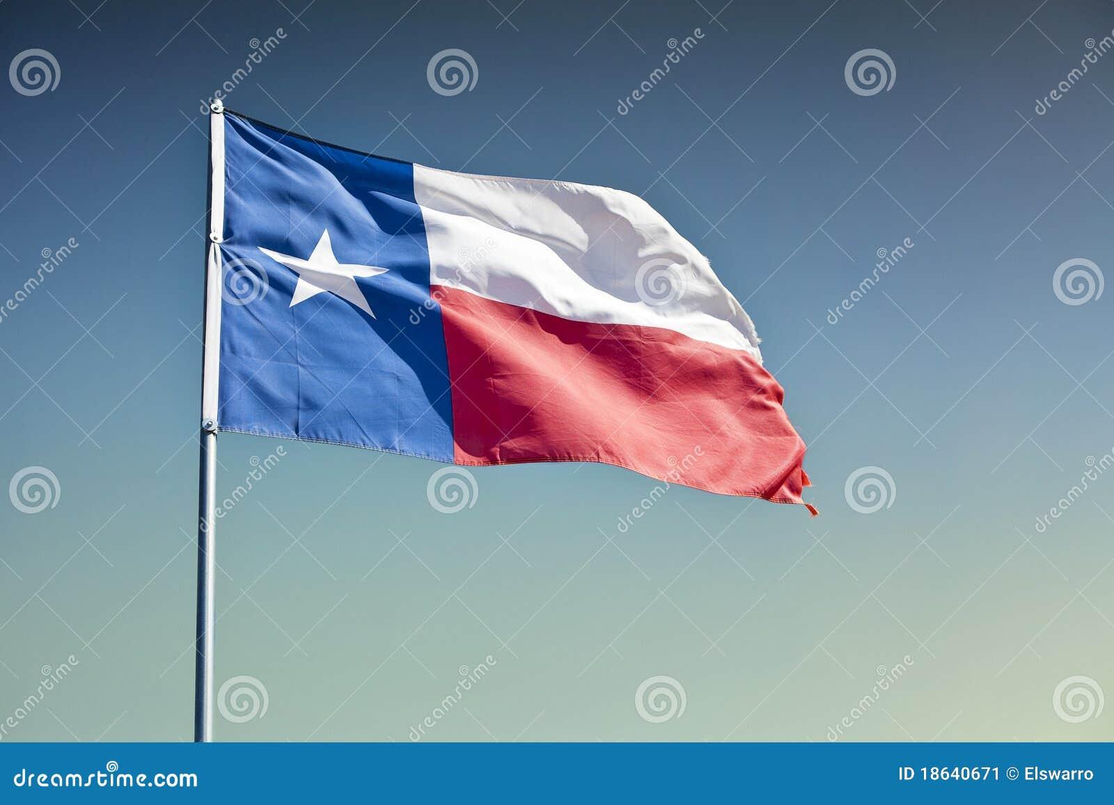 Teksas Stan Flaga