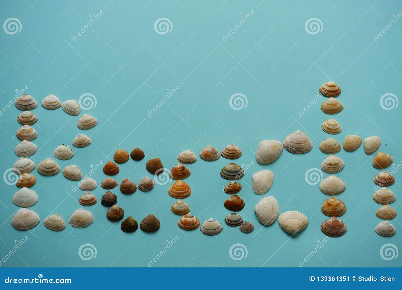 Tekststrand met zeeschelpen blauwe achtergrond die wordt gemaakt