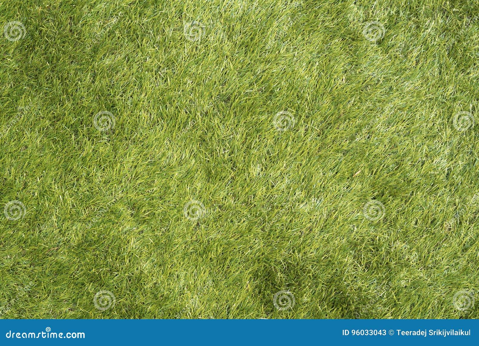 Tekstura natur zieleni szkła