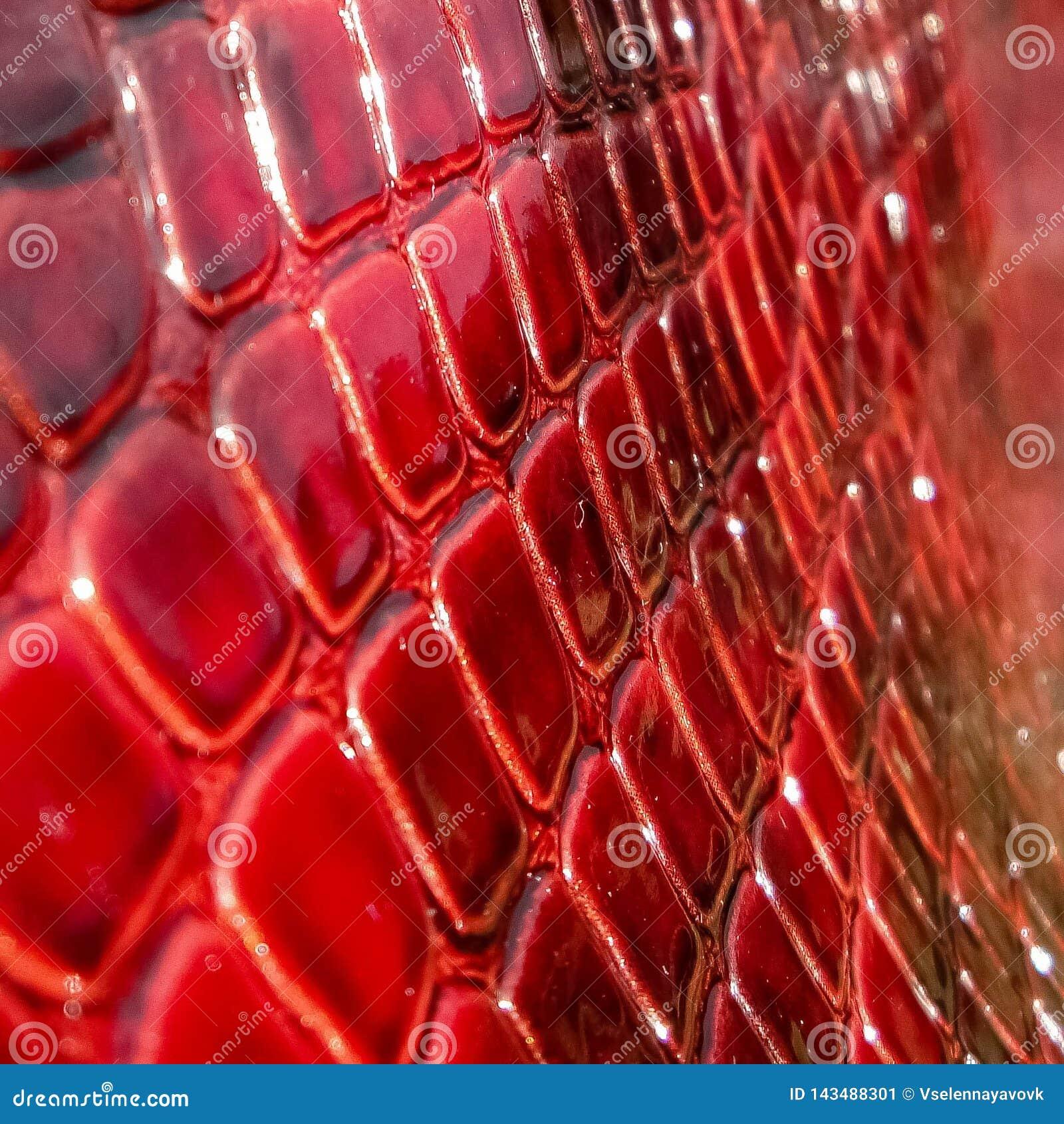 Tekstura prawdziwa patentowa skóra w górę, embossed pod skórą czerwień, różowy gad