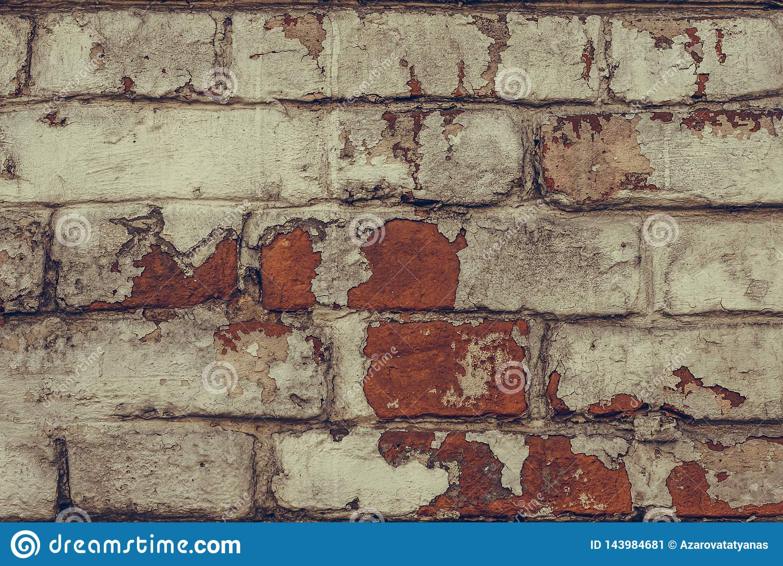 Tekstura zamknięta w górę obdrapana ściana z cegieł Brudzi podławą ścianę z cegieł w białej obieranie farbie Bia?y ?ciana z cegie