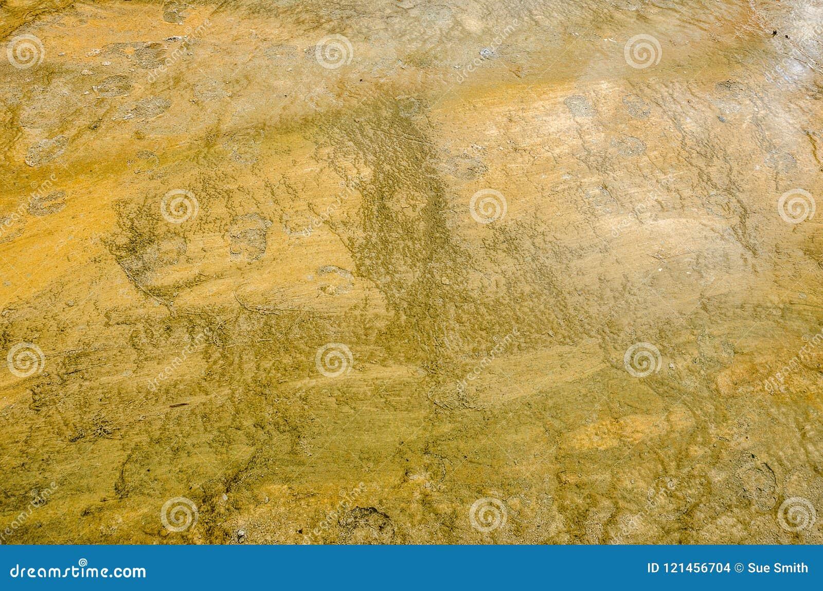 Tekstury w Pomarańczowej i Oliwnej zieleni