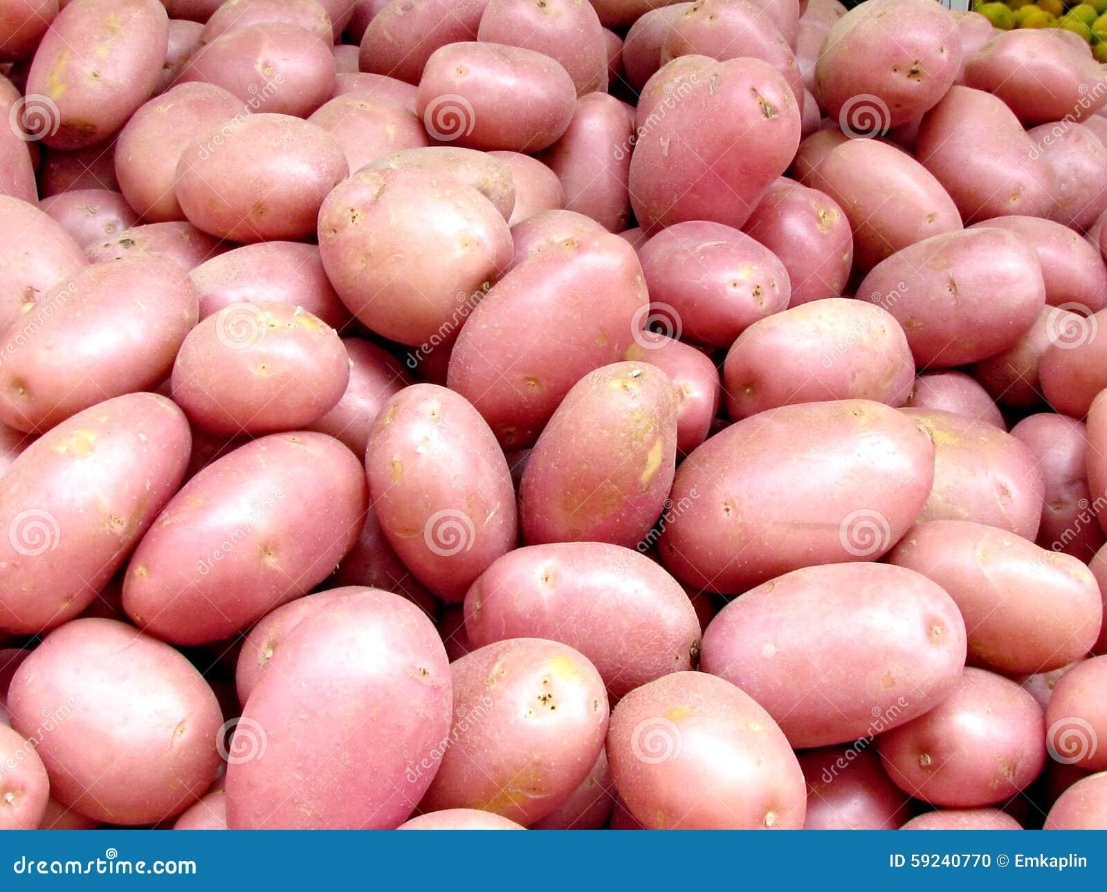 Teléfono Aviv Red Potatoes 2012