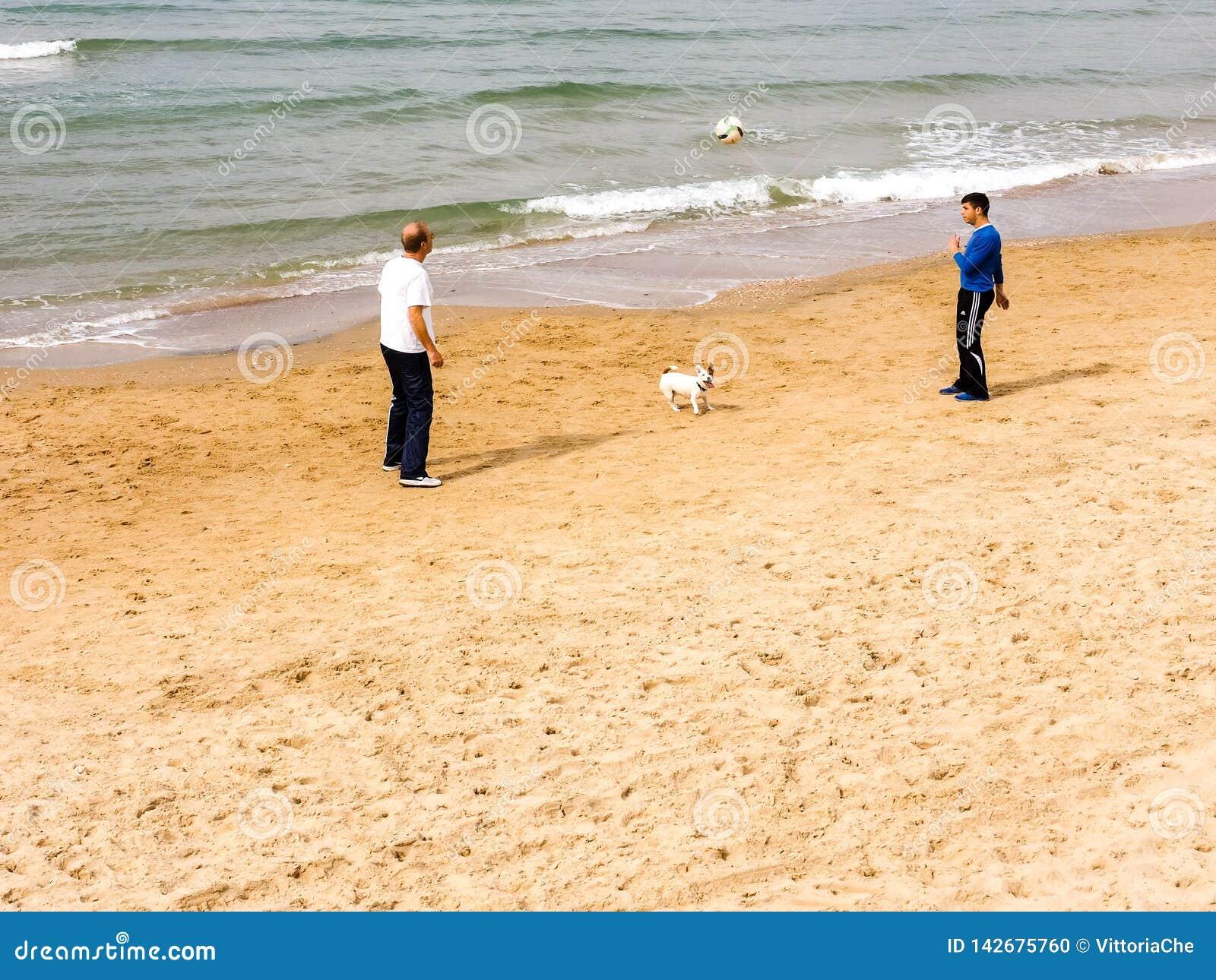 Tel Aviv, Israel - 4. Februar 2017: M?nner, die Fu?ball mit Hunden auf dem Strand von Telefon Baruch in Tel Aviv spielen
