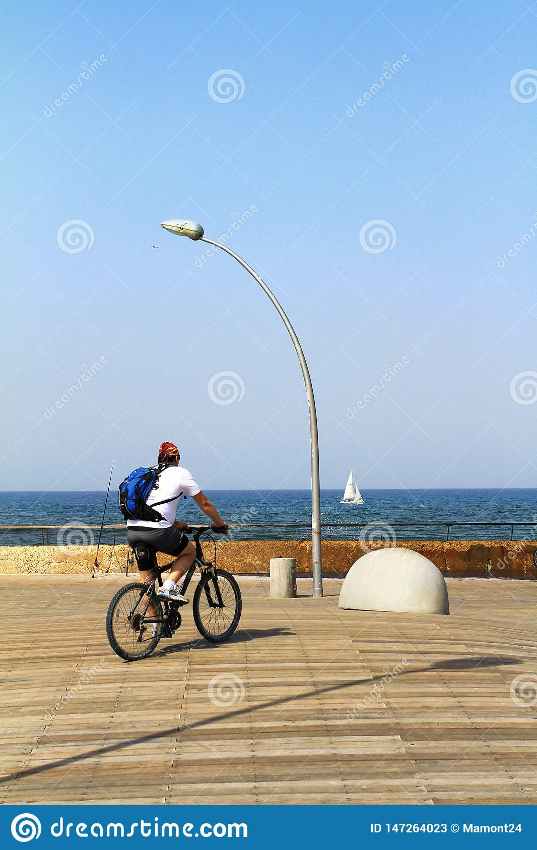 Tel Aviv portu deptak, miastowy drzewny projekt