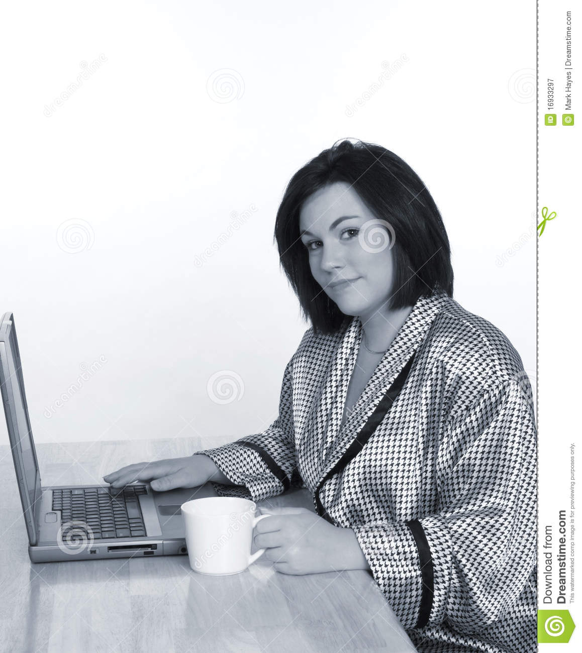 telecommuter in blue royalty stock photography image 16933297 telecommuter in blue