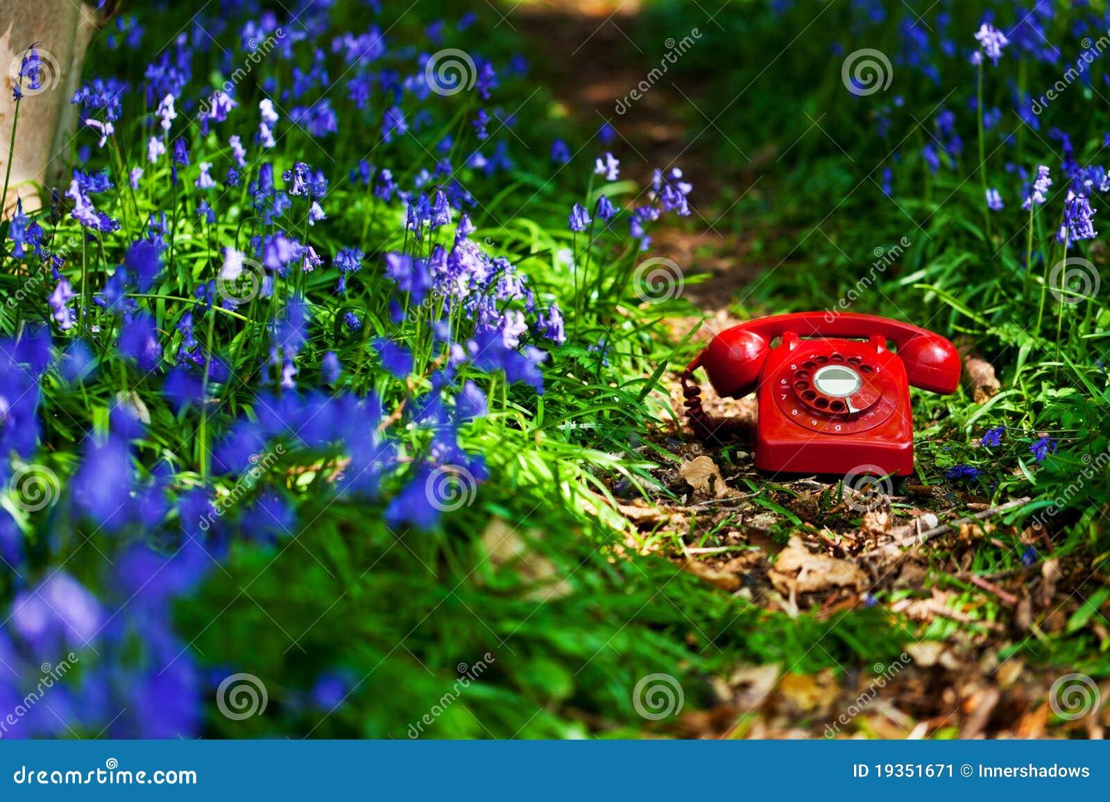 Telefone do Bluebell
