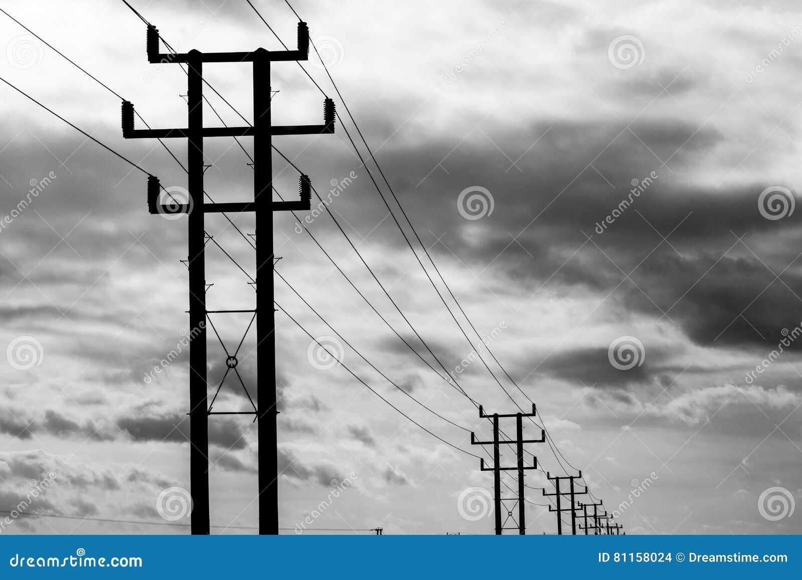 Telegraph poles. stock photo. Image of daylight, pole - 81158024