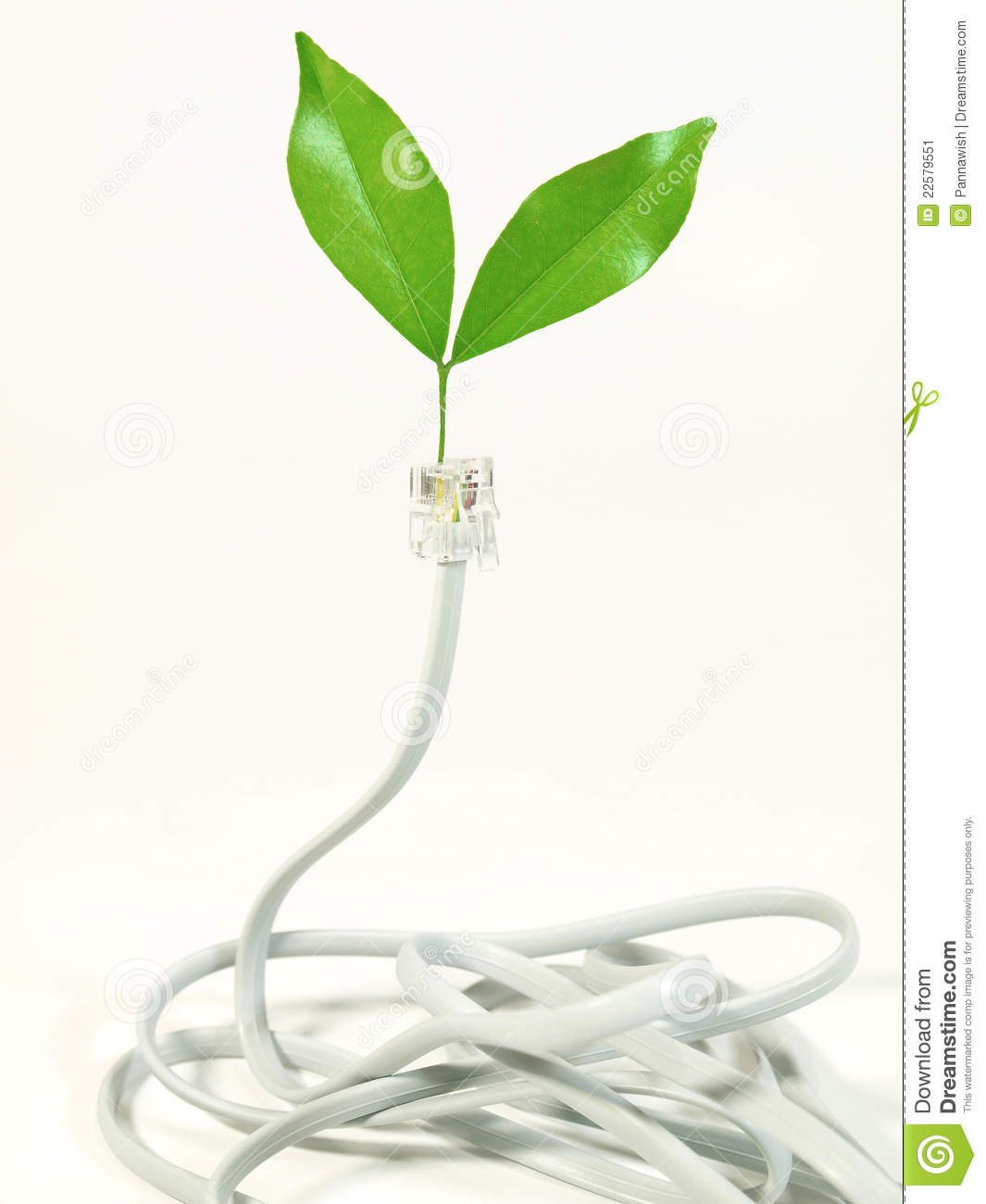 Download Telephone Cable With Leaf On Plug Stock Image - Image of connection, growth: 22579551