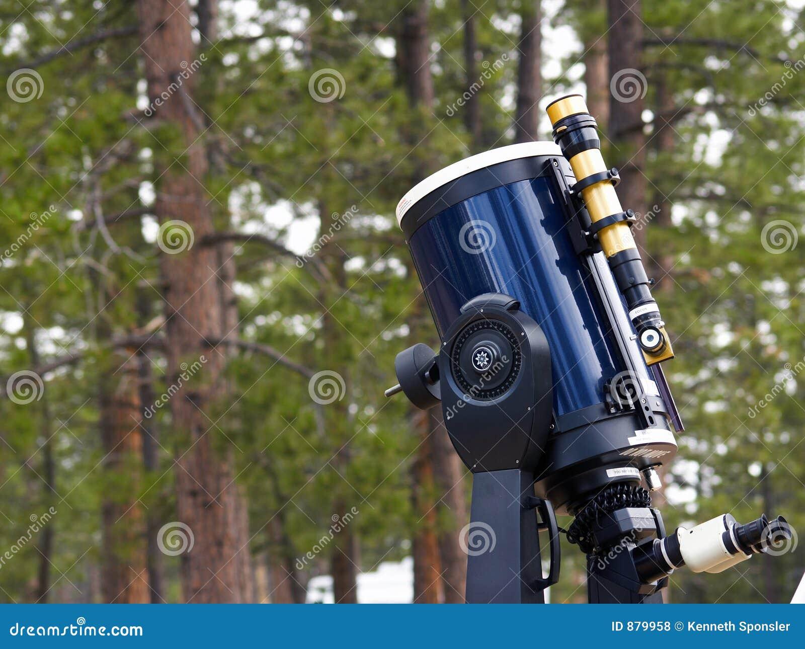 Teleskopów lasu