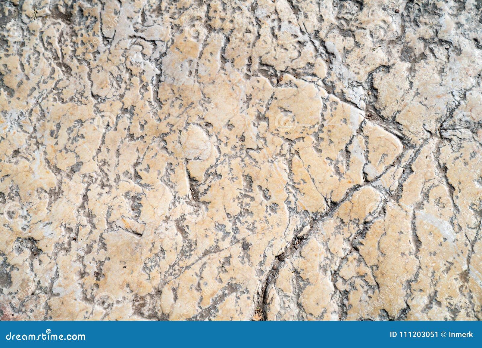 Telha do passeio, a textura do passeio no Temple Mount no Jerusalém