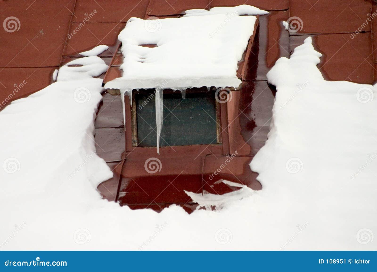Telhado nevado