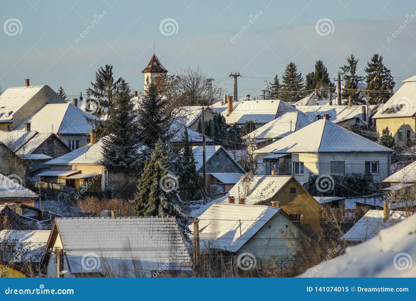 Telhados nevados da vila no vinter