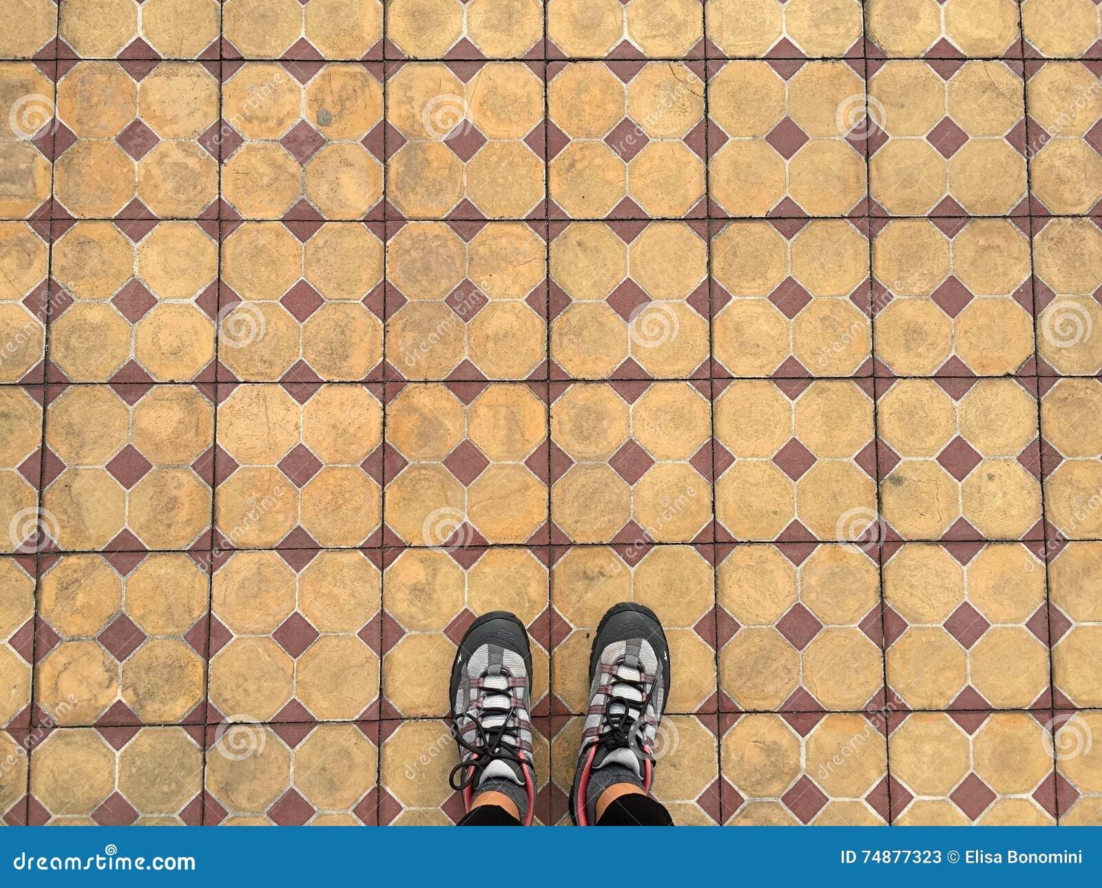 Telhas e pés