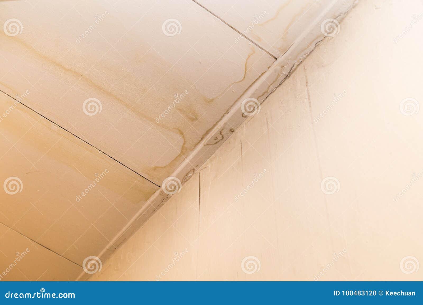 Telhe a marca de água feia dos resultados dos escapamentos no teto