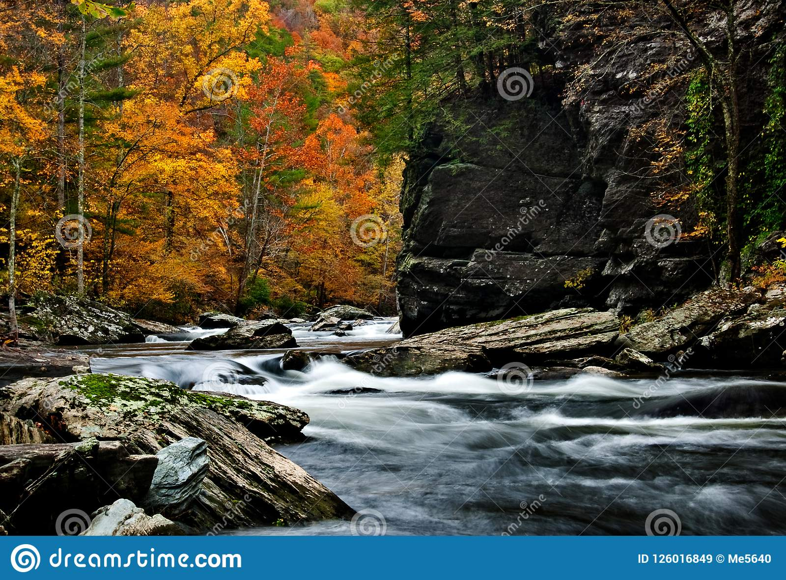 Tellico Rzeczna jesień barwi z zamazaną gnanie wodą