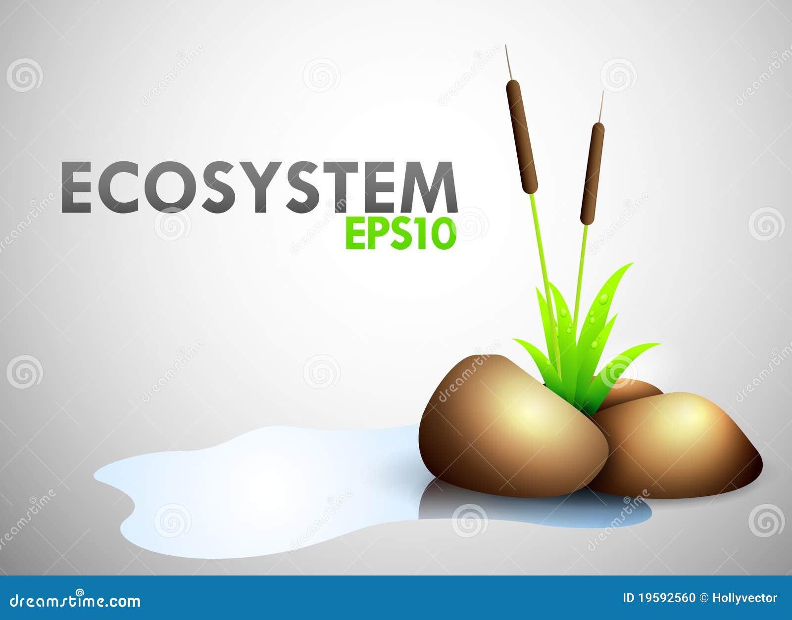 Tema di ecosistema fotografia stock immagine 19592560 for Ecosistema dello stagno